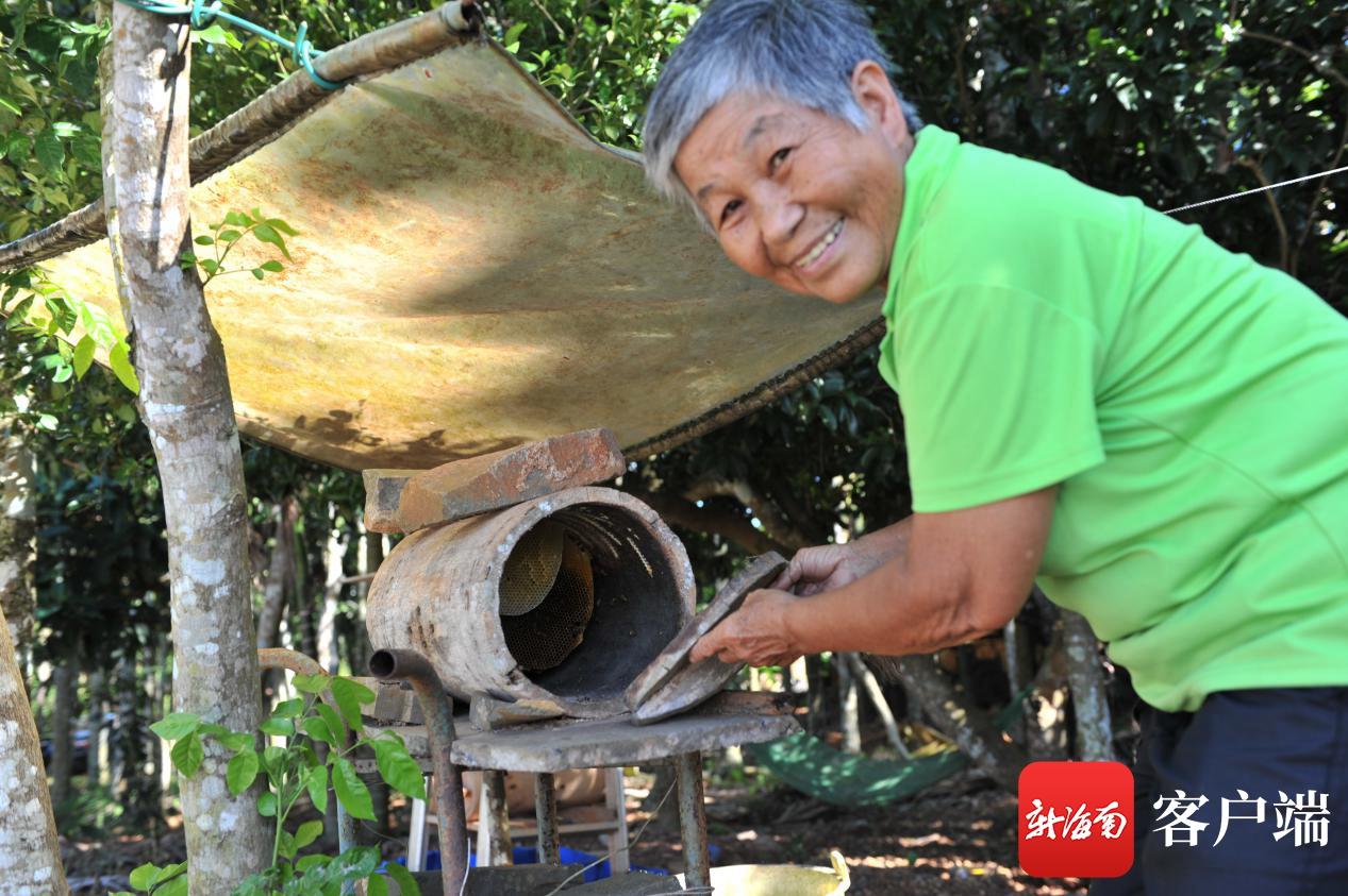 吴剑如在家养蜜蜂改善生活。(连中华 摄)