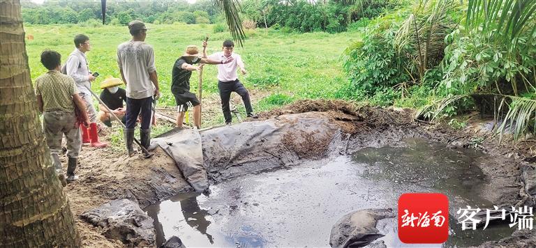潭牛镇镇长吴乾壁(右一)查看养猪场的粪池。